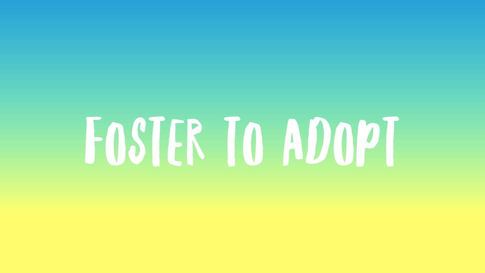 Foster to Adopt (FTA)