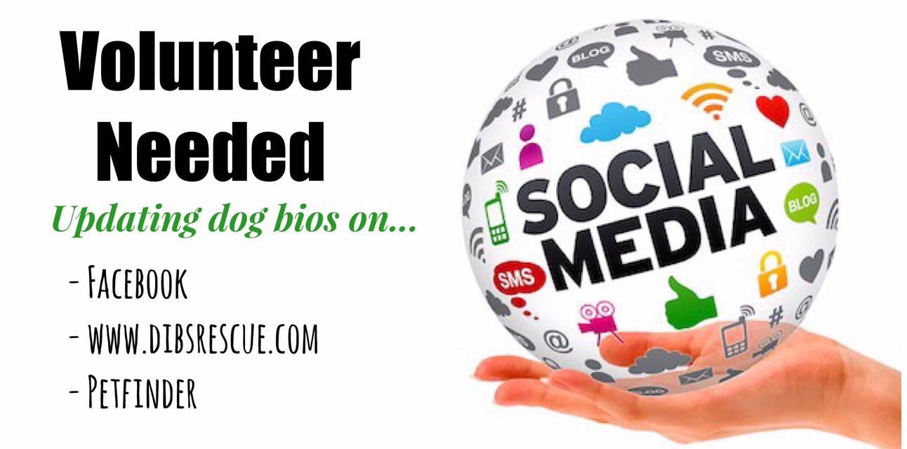 Join our Social Media Team!