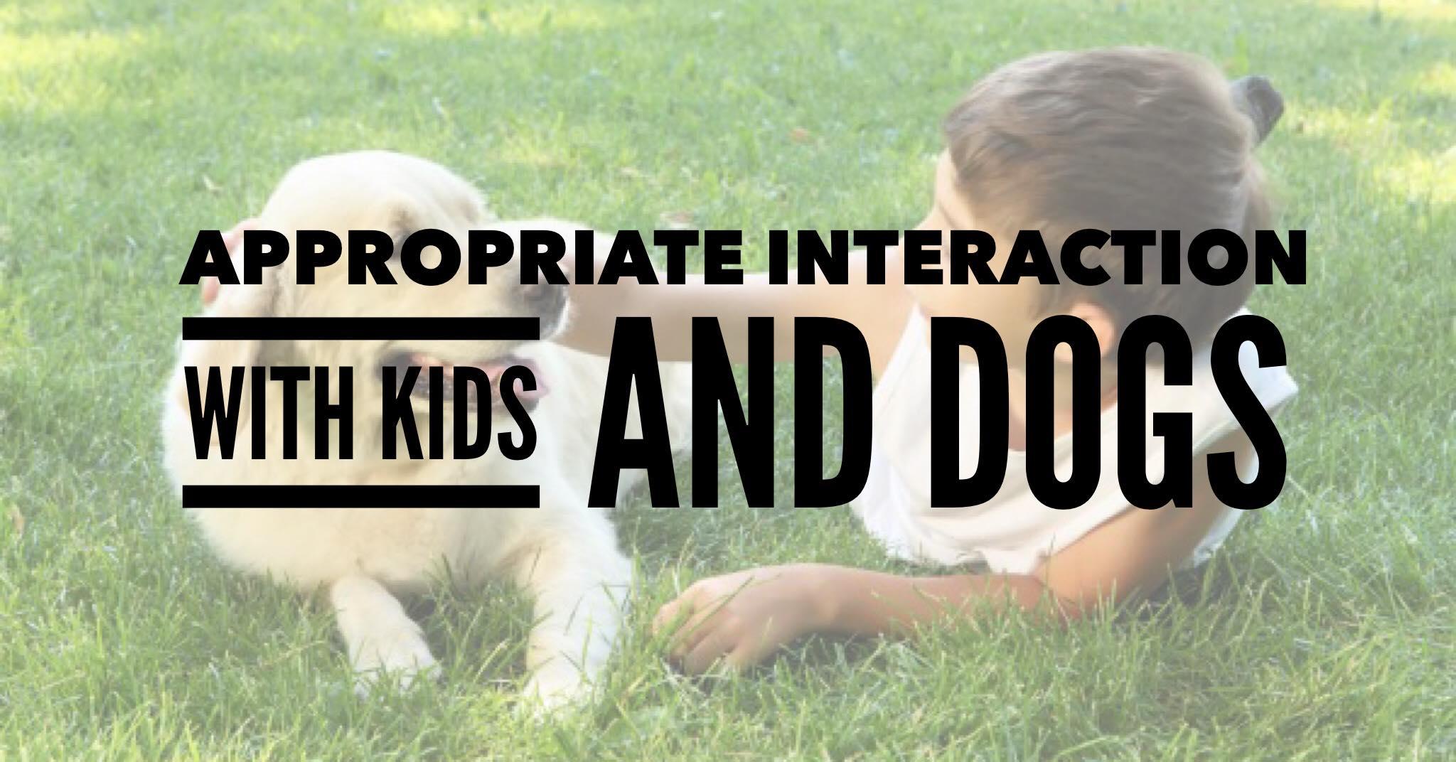 Kids & Dogs!