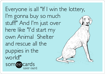 Even If You Don't Win the Lottery…..